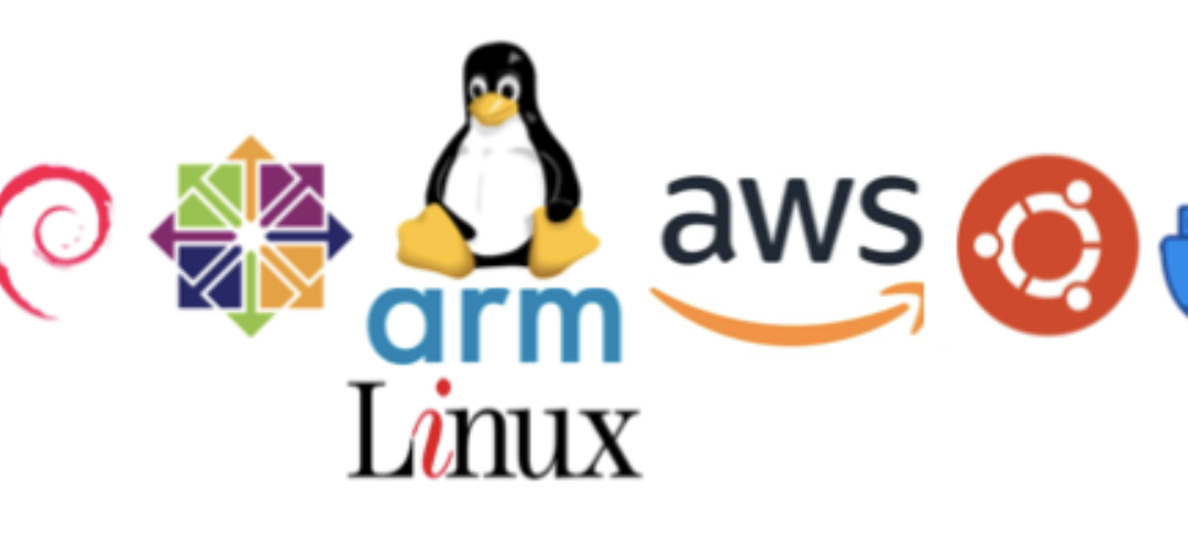 ARM Emulation on x86 Amazon Linux 2/1/Centos — Ubuntu/Debian